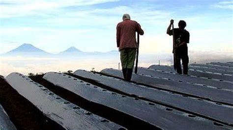 film dokumenter negeri dibawah kabut mobilitas sosial untuk pemula cinema poetica