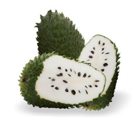 g fruit guanabana guan 225 bana graviola 1kg box 10 x 100g tropifruit