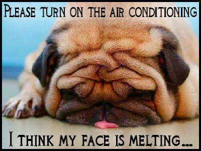 Melting Meme - weather it s not just a conversation filler it s so