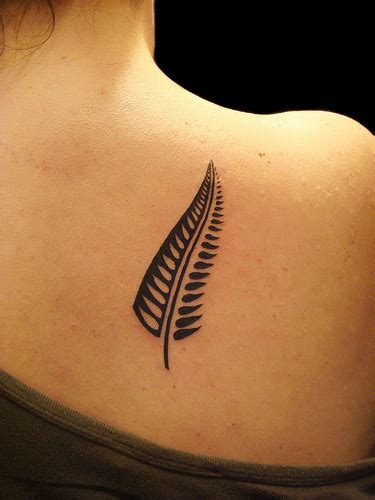 silver fern tattoo designs new zealand tattoos