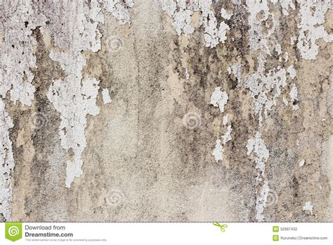 what color is mold white painted wall with mold stains as abstract