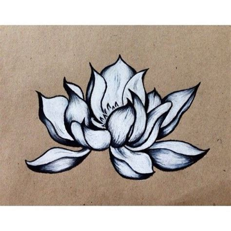 lotus flower drawing lotus pinterest drawings