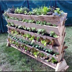 vertical vegetable garden design ideas le jardin potager
