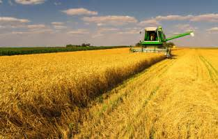 investment opportunity food and agriculture tiq business assistance and rural development us department