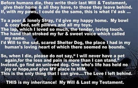 the last will and testament of an extremely distinguished books loving for a living the last will and testament of a