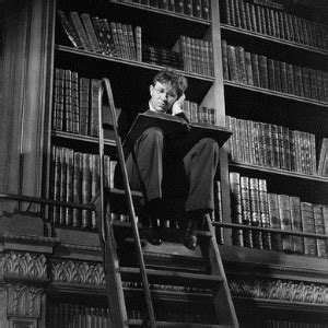 Lost In The Library library book shelves lost in thought on ladder insurance