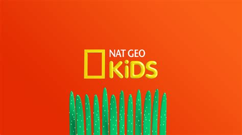 Logo Natgeo New nat geo stimulates mind with new visual identity