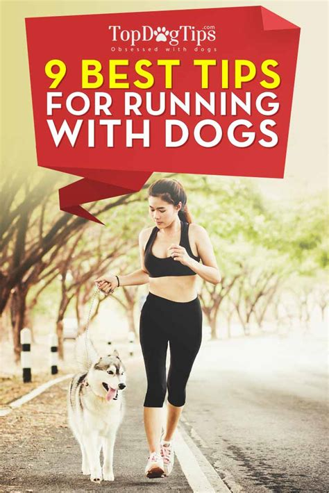 9 tips for running with dogs top tips - 9 Tips For Running With