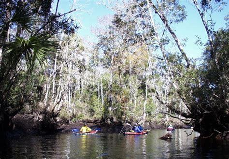 motorboat heads upstream kayakguide waccasassa river near cedar key florida usa