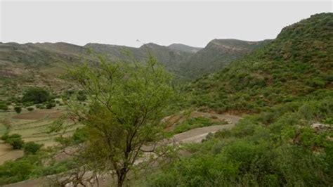 forest landscape restoration flr in to restore