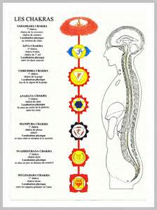 localisation physique des 7 chakras pearltrees