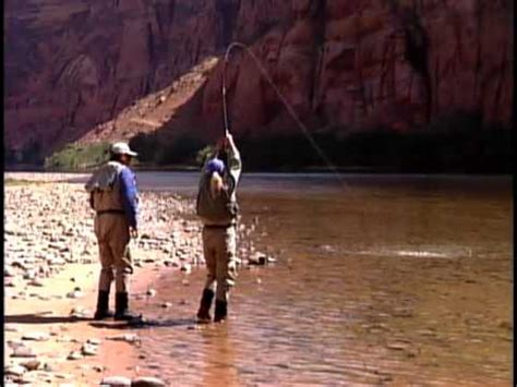 fly fishing colorado s blue lees ferry colorado river fly fishing