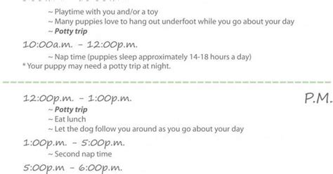 new puppy schedule printable new puppy daily schedule puppy schedule pup and doggies