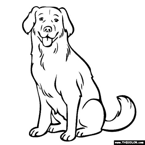 Golden Retriever Sitting Outline by Free Coloring Pages Thecolor