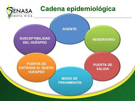 cadena epidemiologica huesped curso de epidemiolog 205 a b 193 sica 1 el enfoque epidemiol 243 gico