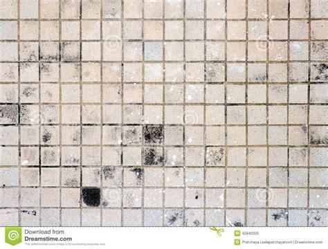 Bathroom Designers Brown Floor Tile Dirty Stock Photo Image 42840320