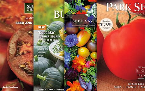 Garden Plants Catalogs by Top 12 Garden Seed Catalogs 2019 The Garden Glove