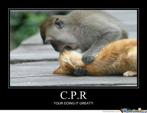 Cpr Dummy Meme - cpr by joshua2ano meme center