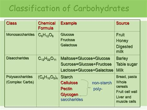 exle of carbohydrates chemical makeup of glucose and starch mugeek vidalondon