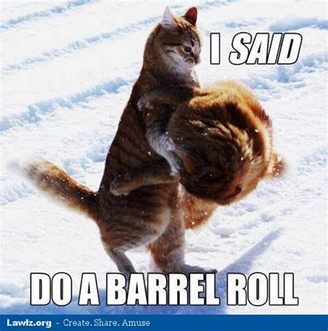 Do A Barrel Roll Meme - atlanta snow meme memes