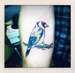 no regrets tattoo okc best oklahoma city artists top shops studios