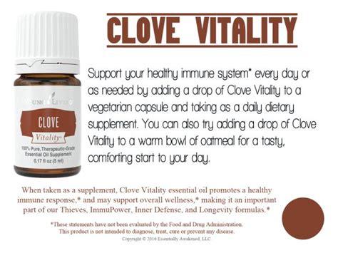 Living Clove the 25 best living clove ideas on clove