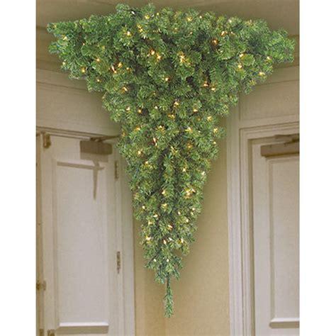 5 ft upside down in corner quarter tree barcana