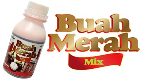 Benihbijibibit Buah Raspberry Mix Import original buah merah mix by essensa naturale u ihub philippines