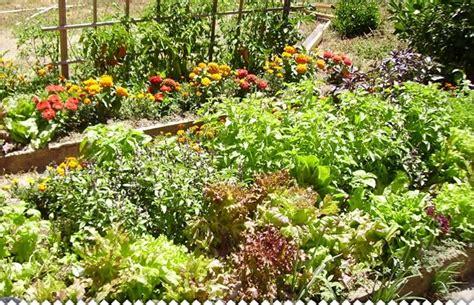 flower design school usa cr 233 er un jardin potager avec jaime jardiner com