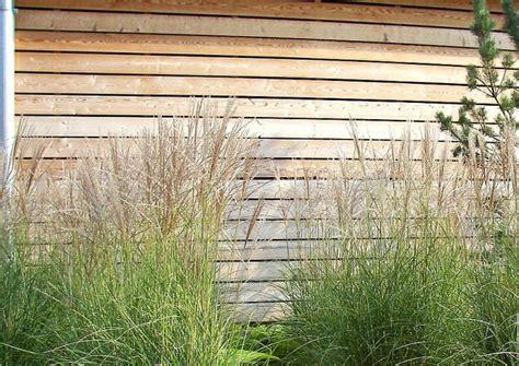 garten französisch terrasse bepflanzen dekor