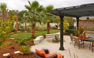 backyard trees landscaping ideas add tropical charm to your backyard by opting for palm trees