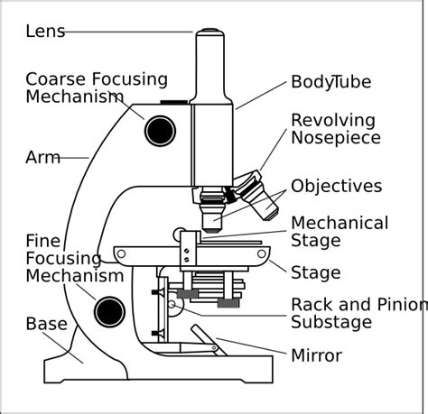 Parts Of A Microscope Worksheet Answers by Worksheets Microscopes Kayt
