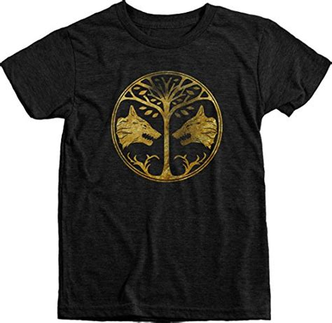 Hoodie Iron Banner 313 Clothing destiny distressed gold iron banner boys tri blend t