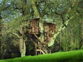 make your own magical tree house plans design tree house