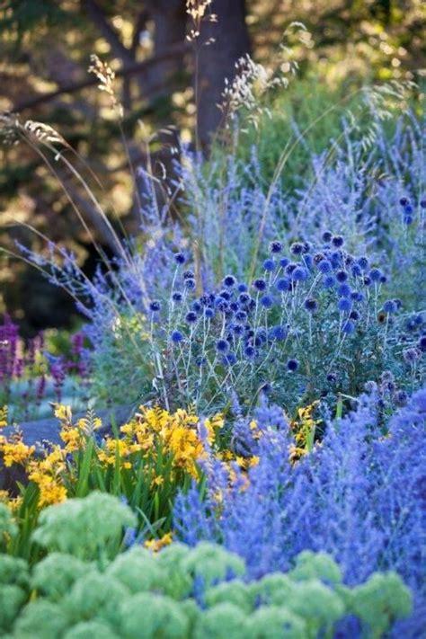 Blue Flower Garden 736 Best Perennials Images On Flowers Garden Gardening And Flower Beds