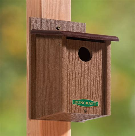 duncraft com duncraft 3003 eco friendly songbird house