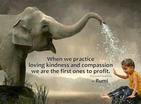 practical kindness 52 ways to bring more compassion courage and kindness into your world books best 25 rumi on ideas on sufi quotes