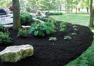 black mulch  awesome photo courtesy   perfect