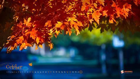 Fondos De Calendarios Fall Colors October 2013 Calendar Wallpaper 1920x1080