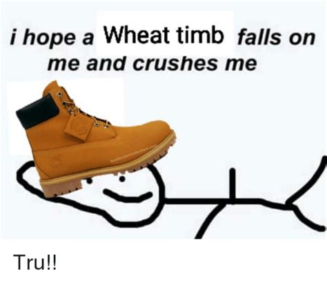 Timb Memes - i hope a wheat timb falls on me and crushes me tru crush meme on sizzle