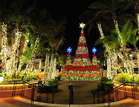 symphony of lights at gulfstream park fort lauderdale on