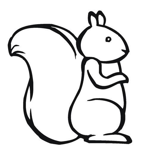 preschool squirrel coloring page squirrel coloring page for kids pattern design ideas