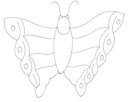 coloring pages of small butterflies butterfly with small wings printable coloring pages