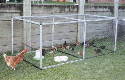 backyard poultry rearing volume 2 issue 2 march 2012