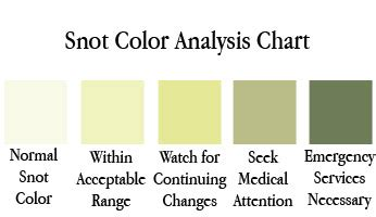 mucus color meanings handy dandy snot chart cafemom