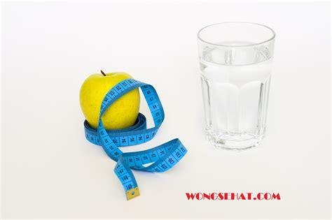 cara membuat infused water for weight loss 3 cara diet cepat dan praktis teruh 2016 wong sehat
