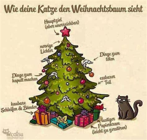 funpot katze und weihnachtsbaum jpg von fabi cat