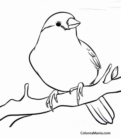 dibujos de islas para colorear dibujos canarias para pintar mapas islas canarias las