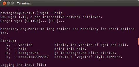 Which Option To The Find Command Will Search By Name Using A Sensitive Match How To Get Help With A Command From The Linux Terminal 8 Tricks For Beginners Pros