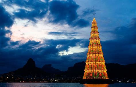 trees of lights in brazil the most beautiful trees in the world wander lust